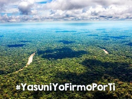 Amazon Watch - Ecuadorian Military Breaks Yasunidos Blockade | Ecuador | Scoop.it