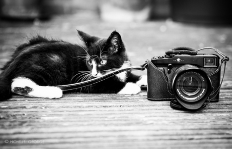 Marlon and the Fuji X-Pro1 | Michelle George | Fuji X-Pro1 | Scoop.it