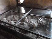 Almacén de clásicas: MUERTES MISTERIOSAS EN POMPEYA (Esqueletos hallados en la casa de Menandro) | Ollarios | Scoop.it