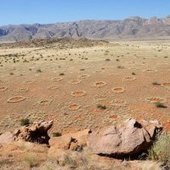 Mysterious Fairy Circles Not Caused by Termites : DNews | Science | Scoop.it