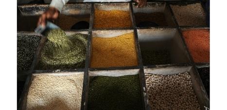 Mettre lentilles et pois chiches dans son assiette, une bonne action pour le climat | NPA - Agriculture-Alimentation | Scoop.it
