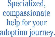florida adoption lawyer | Bonnie3yb | Scoop.it