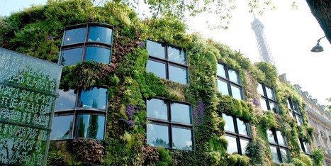 Paris Becomes One of the Most Garden-Friendly Cities in the World | Lorraine's Place and Liveability | Scoop.it