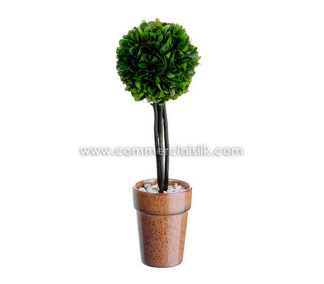 Preserved Trees | Preserved Boxwood Ball Topiary | Commercial Silk Int'l | Artificial, Silk Trees Knowledge Center | Scoop.it