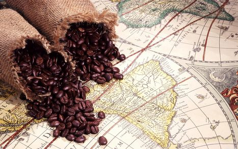 Are rains too late to save Brazil's coffee crop? | Coffee News | Scoop.it