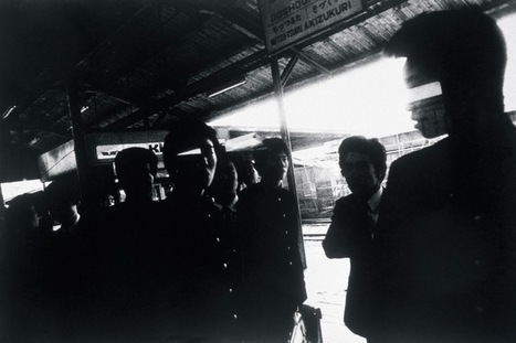 Daido Moriyama And the Cultural Landscape of Post-War Japan | Awesome Photographies | Scoop.it