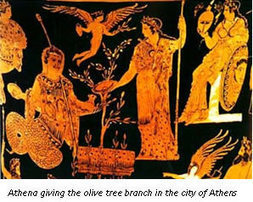 The importance of olive oil in Ancient Greece | Classical Geek | Scoop.it