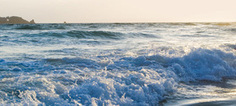 Bon état écologique du milieu marin : Bruxelles tire la sonnette d'alarme | Mer Méditerranée | Scoop.it
