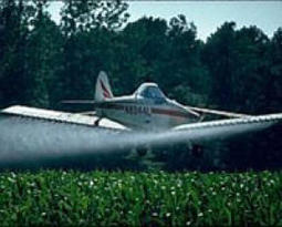 Integrated weed management best response to herbicide resistance | sunnypages | Scoop.it