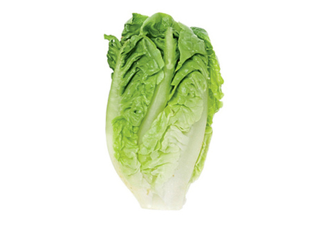 Lettuce: Feed Your Thirst | Bicycling Magazine | Weight loss - why do we need it | Scoop.it