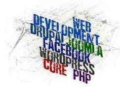 Custom Web Development Company | SEO Company In India | Scoop.it