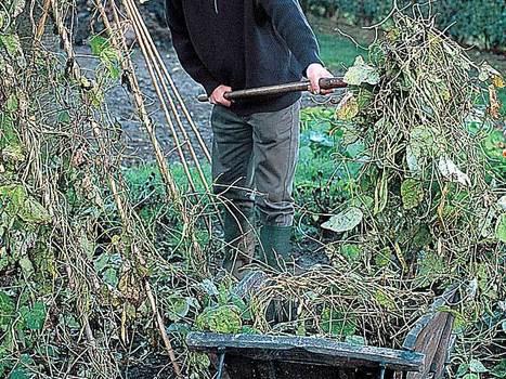 Recycler les déchets végétaux | jardins et développement durable | Scoop.it
