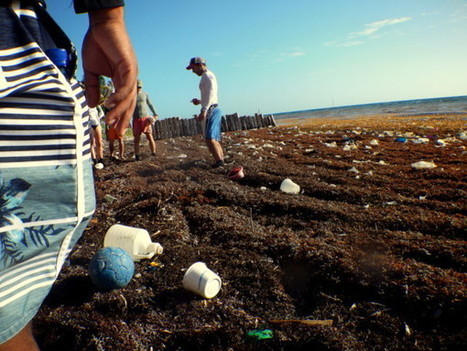 Message in a Belizean bottle: think global, act local and step up plastics recycling | NOTICAS_GEO3ºESO | Scoop.it