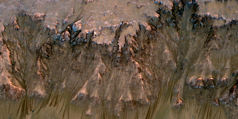 Martian Microbes Could be Feeding on Carbon Monoxide of Icy Polar Caps | Amazing Science | Scoop.it