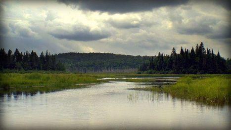 Pour protéger plus de terres privées | Environnement | Actualités | Laurentides | CAQ BERTRAND | Scoop.it