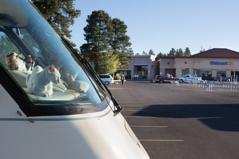 Photographer Captures the Lives of People Who Often Call Walmart Parking Lots Home | Photography | Scoop.it