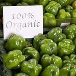 Organic Food Wholesale Suppliers | Trusted Wholesale Meat Supplies | Scoop.it