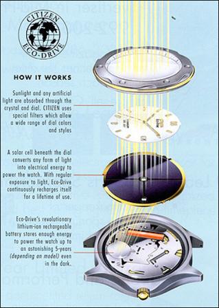 Eco-Drive Vs. Kinetic Watches   Watch Magazine   Scoop.it