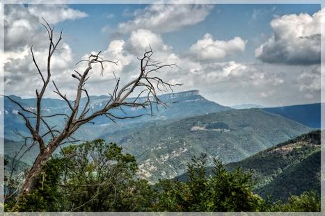 SUSQUEDA – NTRA. SRA. DEL MONT | La Selva 2.0 | Scoop.it