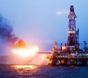 Protect Arctic Wildlife from Oil Drilling | GarryRogers Biosphere News | Scoop.it
