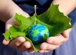 IFF releases sustainability report focusing on responsible sourcing and eco-efficiency | 'Wealth of the Product' | Scoop.it