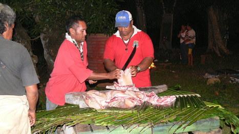 Island feast preparation | OHS: Puni Tairea | Scoop.it