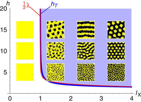 Pigment cell movement is not required for generation of Turing patterns in zebrafish skin | Papers | Scoop.it