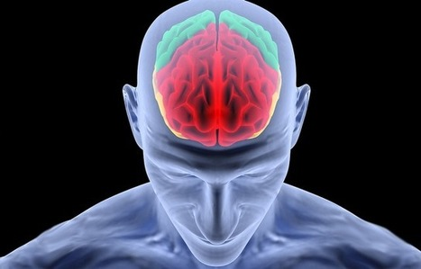 Mind Controlled Neuroprosthetics Possible Due To Brain Plasticity | Global Brain | Scoop.it