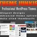 Theme Junkie 50% OFF Coupon Code May 2013 | Blogging Tips | Scoop.it
