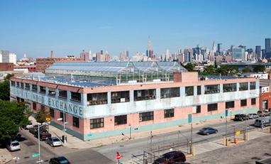 Serre de 1850 m2 à but commercial sur le toit d'un magasin de Brooklyn à New-York | Urban design tools | Scoop.it