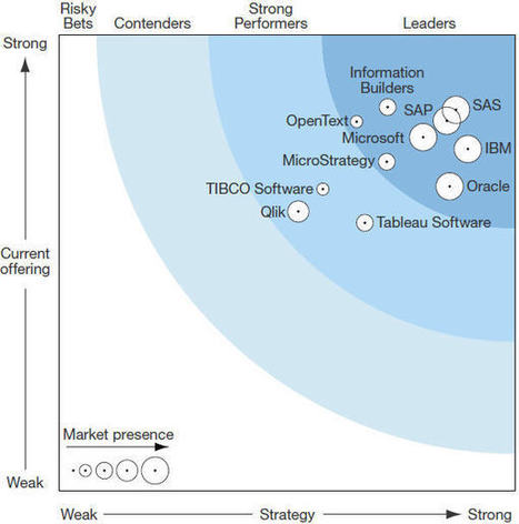 Les meilleures solutions de Business Intelligence selon Forrester | Mesure de la performance | Scoop.it