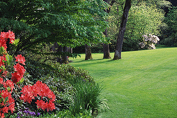 Landscaping Installation Costs | Average Price to Install Landscaping | Landscape Installation Cost in Pittsburgh PA | Scoop.it