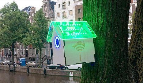 Créativité et gamification pour combattre la pollution de l'air : Tree Wifi et Pigeon Air Patrol – Effisciencity | SeriousGame.be | Scoop.it