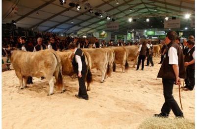 Un « Sommet » de races animales prestigieuses et des éleveurs au fond du trou - L'Humanité | Agriculture en Dordogne | Scoop.it