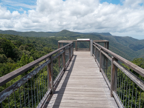 Mini Road Trip: Exploring the Gondwana Rainforests of Australia and Waterfall Way - Pretraveller | Dorrigo | Scoop.it