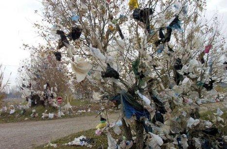 SENEGAL/ Les députés adoptent le projet de loi sur l'usage des sachets en plastique | Afrique: développement durable et environnement | Scoop.it