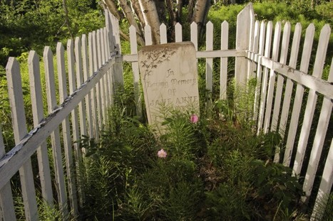 Vandalized Back Bay Cemetery #YZF #NWT Photos & video | NWT News | Scoop.it