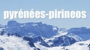 Les vautours attaquent ? Pyrénées Pirineos - France 3 Languedoc-Roussillon | balades en pyrénées | Scoop.it
