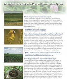 Integrating Native Prairie into Cropland | Native Illinois Plants | Scoop.it