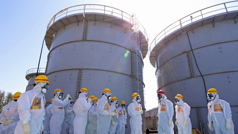 TEPCO Just Spilled Tons of Radioactive Water into Fukushima's Soil | ApocalypseSurvival | Scoop.it