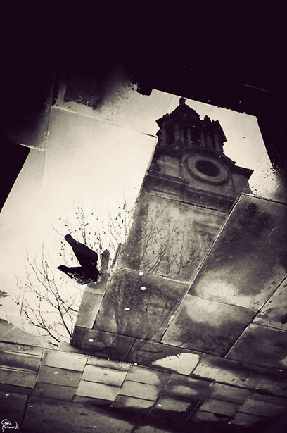 London in Puddles: Photography by Gavin Hammond | Random Ephemera | Scoop.it