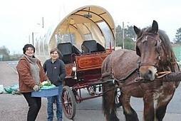 Normandie: Découvrez l'Equinette, l'épicerie à cheval de Ver-sur-mer !! (video FR3) | Les news en normandie avec Cotentin-webradio | Scoop.it