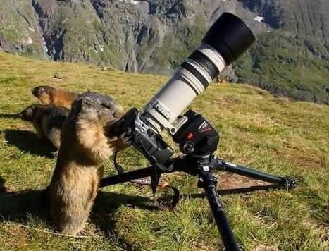 Apéro Photo - Rencontre photographes amateurs et professionnels | Facebook | L'actu de la photo | Scoop.it