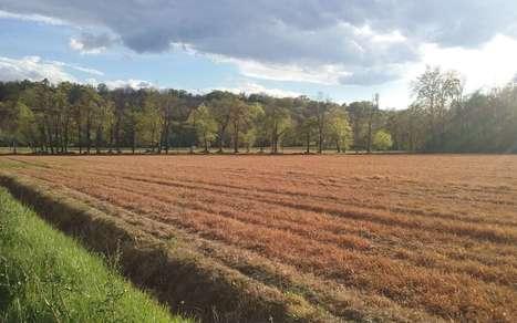 Pesticides : la Sepanso porte plainte à Pau | Agriculture en Pyrénées-Atlantiques | Scoop.it