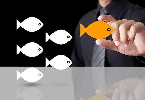 Créez davantage de valeur pour vos clients et différenciez votre offre | Le Blog Du Consultant | Scoop.it