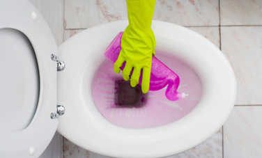 7 Things That Are Germier Than Your Toilet | Care2 News Network | CALS in the News | Scoop.it