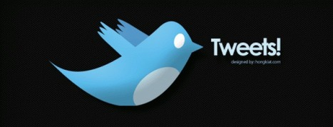 La préfecture de Moselle, la première en province sur Twitter | Social Media Curation par Mon Habitat Web | Scoop.it