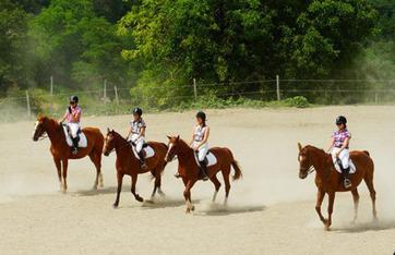 - Centre Equestre La Jumenterie | Dans l'Allier | Scoop.it