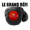 LE GRAND DEFI WUSHUGUAN SPORT CLUB TOULOUSE