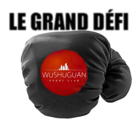 LE GRAND DEFI WUSHUGUAN SPORT CLUB TOULOUSE | LE GRAND DEFI WUSHUGUAN SPORT CLUB TOULOUSE | Scoop.it